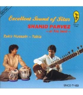 Excellent Sound of Sitar