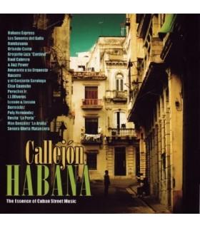 The Essence of Cuban Street Music