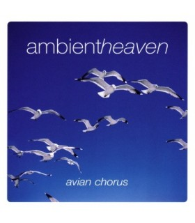 Avian Chorus