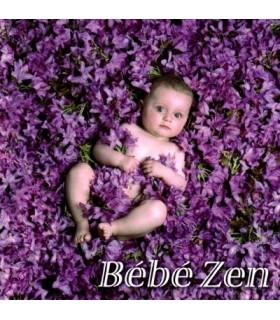 Bebe ZEN