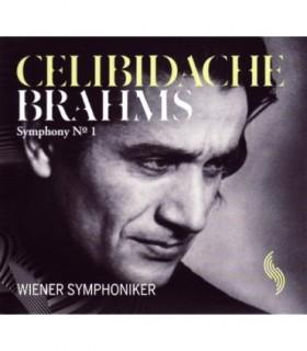 Symphony No 1 in C minor Op.68