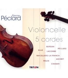 Violoncelle 5 cordes