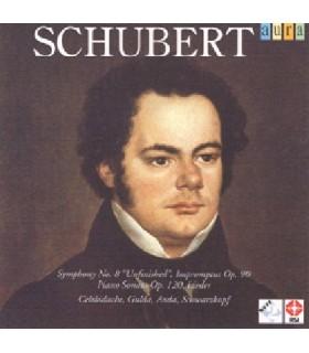 """Symphonie N°8 """"Inachevée"""" D759"""